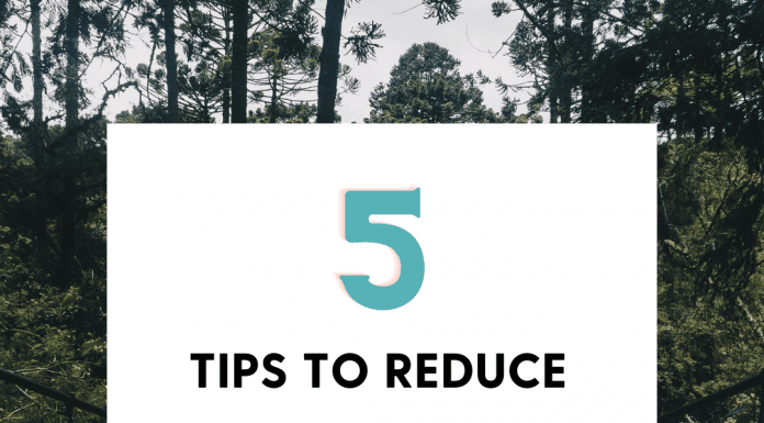 5 Tips to Reduce Stress as a Busy Mom